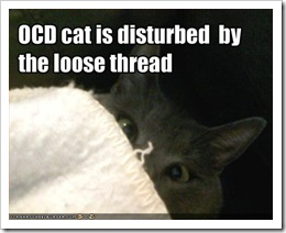 funny-pictures-ocd-cat-is-disturbed-by-loose-threads1