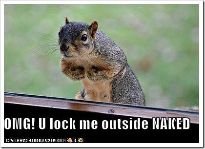 funny-pictures-squirrel-locked-outside-naked