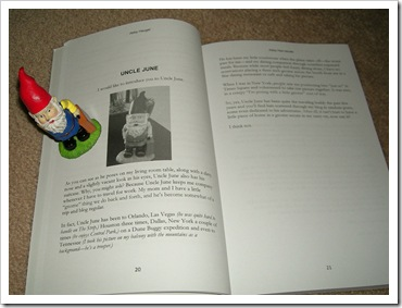 gnomebook1