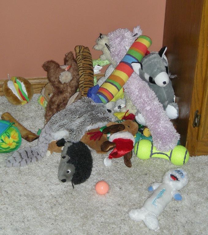 Plastic Toy Dogs Perth Wa
