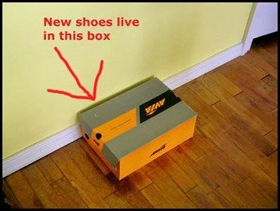 shoebox_thumb1